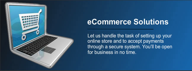 Web Hosting, Design, Ecommerce, Online Support